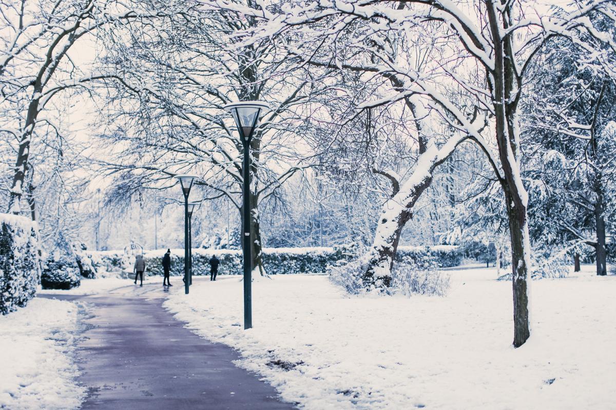 Fin février : dire non au spleen hivernal